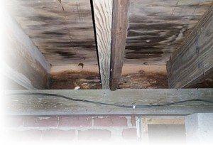 foundationrepair